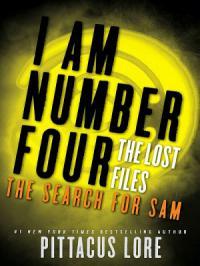 Пропущенные материалы: В поисках Сэма