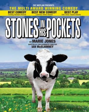 Джонс Мери - Камни в его карманах