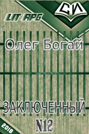 Богай Олег - Булыга: Заключенный № 12 (СИ)