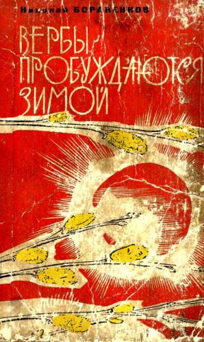 Бораненков Николай - Вербы пробуждаются зимой